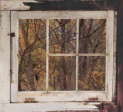 Outside the window, framed (Rocky Pix) Tags: county autumn window water creek river rockies colorado farm longmont tripod bottom boulder foliage nikkor michel pastoral f28 corral agricultural springhouse stvrain f28g normalzoom broley basinrockypixrockymountainpixw kiteleyf16120thsec42mm2470mm outsidethewindowframed