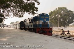 130130_05 (The Alco Safaris) Tags: ir indian railways dlw alco wdm3d
