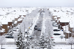 Snow Covered Suburbia (Lisa-S) Tags: winter snow ontario canada hospital rooftops parkinggarage sticky lisas fromabove brampton invited snowcoveredtrees 3932 flickropen copyright2013lisastokes getty2013 dandelionroad getty20130305