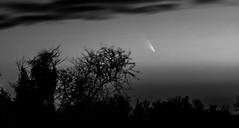 Comet PanSTARRS! (NKij) Tags: sunset sky dawn batonrouge comet northernhemisphere panstarrs cometpanstarrs