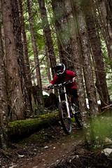 2013Mar08_wyp_cakew3565 (TreeFrendo) Tags: justin trees mountain mountains bike cake forest walk bikes bern squamish blackmarket blkmrkt wyper