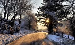 Tofe di Montemonaco al primo mattino (Vitafabrizio64) Tags: alberi nikon strada italia neve sole marche sorgere