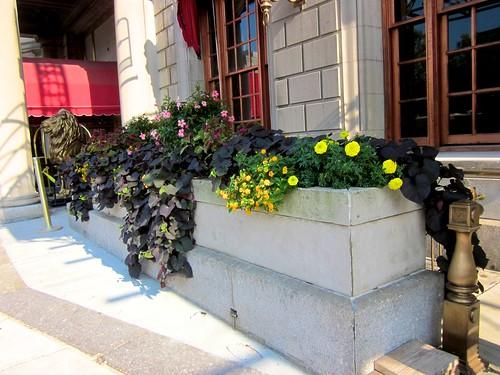 Street Planter