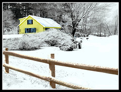 The Yellow House & Brown Fence At Grove Street In Chelmsford, MA. During Snow Storm - Photo by STEVEN CHATEAUNEUF - Original Photo Was Taken On March 7, 2013 by STEVEN CHATEAUNEUF - This Version Was Created On March 23, 2013 (snc145) Tags: trees windows roof winter sky usa brown white house snow tractor black nature colors yellow photoshop fence landscape outdoors photography design photo scenery seasons artistic photos massachusetts digitalart snowstorm creative processing digitalcamera bushes soe chelmsford grovestreet flickraward picnikediting picasa3editing aviaryediting stevenchateauneuf ringexcellence olympussz14 march232013 march72013