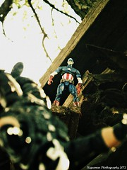 P1280245 (THE AMAZING KIKEMAN) Tags: man america comics scott toy photography james spider iron action steve cyclops tony lizard scorpion peter xmen captain figure legends carnage rogers curt logan biz marvel stark universe parker crossbones wolverine connors hasbro summers howlett