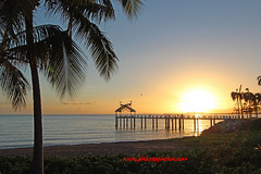 The Strand (Phil Copp) Tags: morning trees beach water strand sunrise palms sand jetty calm esplanade tropical townsville