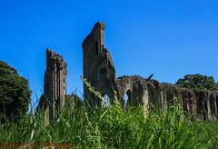 Glastonbury Abbey (Emsey!) Tags: ruins building architcture glastonburyabbey grass