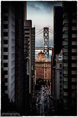 The bay (Alex Chilli) Tags: bay bridge sanfrancisco california canon cali street hill down downtown financial district buildings