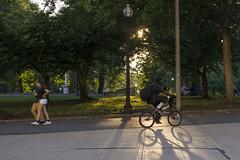 2016-08-15 Boston Common 001 (consolecadet) Tags: boston bostoncommon bike shadow sunset goldenhour city