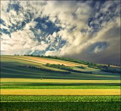 Green field (Katarina 2353) Tags: landscape spring serbia srbija srem katarina2353 katarinastefanovic film nikon