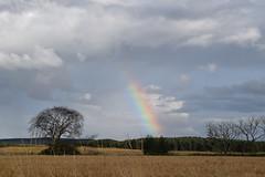 Rainbow! (Bebopgirl1969) Tags: rainbow moray scotland sky kinloss