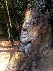 Escultura em tronco de rvore (Valter Frana) Tags: escultura tronco arte artista arts fine tree