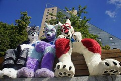 Arco Fluffypaw, Swip and me at Eurofurence in Berlin, Germany. What a nice and sunny day x3 I love you two x3 (Keenora Fluffball) Tags: keenora fursuit furry kee