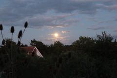 Moonrise (Vasquezz) Tags: mond moon nacht night mondaufgang moonrise mondlicht moonlight twitter