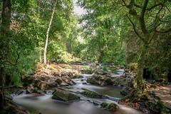 Verdes 04 (san_tipazos) Tags: coristanco verdes cascada bosque forest agua galicia nature canon eos 6d 2470mm 2470