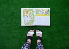 fairy tale grass (hanaletters) Tags: hanaletters etsy farytales littleredridinghood