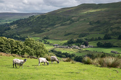 Photo of Village of Satron in Swaledale