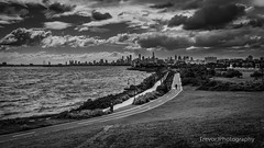 Elwood, Melbourne (trevorjphotography) Tags: drama dramatic weather clouds cloudy cumulus highcontrast seascape cityscape landscape wideangle melbourne elwood beach waves portphillipbay leadinglines path walking person city cbd skyline skyscrapers victoria australia coastline coast coastal canoneos5dmarkii ef1740mmf4lusm coolclouds shore shoreline stkilda shrubs buildings