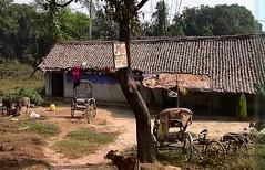 INDIEN , india, unterwegs nach Varanasi, 14275/7143 (roba66) Tags: indienunterwegsnachvanarasi indien indiennord asien asia india inde northernindia urlaub reisen travel explore voyages visit tourism roba66 dorf village arm