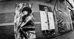 White Wood Project Wicker Park (Ok Andrew) Tags: white wood project left handed wave revise pizzaintherain plywood art painting street chicago artists verticalgallery wicker park d5500 nikon