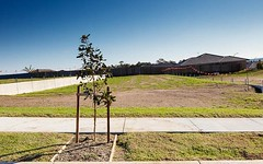 Lot 910, Prairie Way, Gillieston Heights NSW