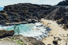 DSC_0870-LR (nesteaman2) Tags: hawaii oahu hawaii2016 makapuu beach water blue halona
