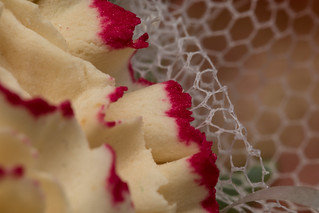 20160926_5191_7D2-10 0 Sugar craft carnation petals and lace (MacroMonday - Handle with Care)