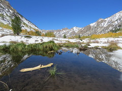 Fall Reflection (claypeoples) Tags: fall color foliage snow landscape mountain ruby lamoille canyon water pond reflection west scenery nevada
