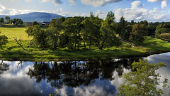 Scotland and its bonnie trees - HTT! (lunaryuna) Tags: scotland cairngorms cairngormsnationalpark landscape hills river riverspey trees reflections pastures sheep sky clouds seeingdouble treemendoustuesday htt lunaryuna nature