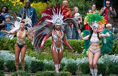 Paraso School of Samba (McTumshie) Tags: hornimanbrazil 20160904 hornimancarnival hornimanmuseum london parasoschoolofsamba carnival costumes dance dancing england unitedkingdom londonist
