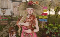 Simple Kind of Life (Gabriella Marshdevil ~ BUSY IRL) Tags: sl secondlife cute vco kawaii blackbantam whimsical jian