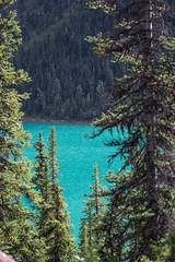 Jasper National Park (pbruch) Tags: rocky mountains jasper national park waterfall nature sublime treasure wilderness