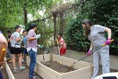 Center City PCS-Brightwood Enhancement Day 9/24/2016 (REAL School Gardens) Tags: center city pcs brightwood dc enhancement