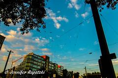 Exotic birds on sky (Bernsteindrache7) Tags: summer panasonic lumix landscape outdoor color city heaven himmel sky clouds light build flora fauna nrw germany blue dsseldorf