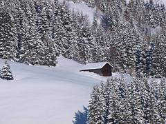 Chalets isolés dans la neige (Stefho74) Tags: france montagne chalet neige savoie hautesavoie rhonealpes lescontaminesmontjoie stefho74