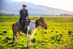 Sunset Rider (Feng Wei Photography) Tags: china horse color green beautiful beauty horizontal landscape cool scenery colorful asia ride outdoor scenic meadow pasture xinjiang prairie lush elegant grassland rider kazakh elegance xinyuan nalati