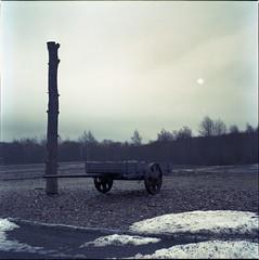 -- (cyv2) Tags: camp deutschland buchenwald weimar holocaust concentrationcamp