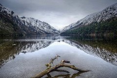 Glendalough upper lake (Vincent Coey Photography) Tags: glendalough upper lake laragh county wicklow ireland water reflections snow ducks cloud nikon d5100 mountains forest trees log mygearandme mygearandmepremium mygearandmebronze mygearandmesilver mygearandmegold mygearandmeplatinum mygearandmediamond photographyforrecreationeliteclub photographyforrecreationclassic me2youphotographylevel1 me2youphotographylevel2 me2youphotographylevel3 blinkagain me2youphotographylevel4 rememberthatmomentlevel1 rememberthatmomentlevel2 rememberthatmomentlevel3 bestofblinkwinners blinksuperstars rememberthatmomentlevel4 rememberthatmomentlevel5 rememberthatmomentlevel6 flickrstruereflection2 flickrstruereflection3