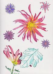 Sketch & Watercolor lesson 1 part 2a (susanleslie11) Tags: watercolor marker pittpen tombowmarker