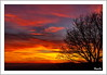 Puesta de sol invernal. (PacoSo) Tags: naturaleza nature twilight natura puestadesol cielos navarra pacoso crepúsculovespertino cielosdenavarra