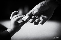 El Testigo (Gorka Goitia) Tags: blackandwhite bw blancoynegro monochrome hands focus manos bn blancetnoir enfoque