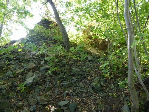 Krzewy porastające ruiny zamku w Kłaczynie
