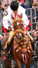DSC_0257 (Valeria Castellino) Tags: sardegna italy horse costume italia sardinia mask tradition carnevale cavallo spada maschera horserace cavaliere horseman tradizionale sartiglia tradizione gremio componidori finimenti costumetradizionalesardo costumetradizionale bardatura corsaequestre gremiocontadini