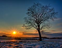 Thürimngen Schnee-11-BearbeitetAnd18more.jpg (Setekh81) Tags: schnee winter thüringen