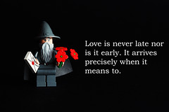 Romantic Gandalf! (Debbie Hickey) Tags: cute love studio toys lego teddy sweet valentines iloveyou tipperary lightbox feb14 fakeplastictrees lightsetup valday valentinescard feb14th legoflowers legomoc studioten debbiehickey debbiehickeyphotography rosesareredhappyvalentinesday
