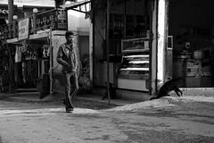 The man and the dog, Kaza - Spiti valley - Himachal Pradesh - India (mafate69) Tags: street portrait bw dog chien sun india soleil asia noiretblanc photojournalism nb asie himalaya rue himachal himalayas spiti inde reportage himachalpradesh southasia subcontinent kaza spitivalley photojournalisme indiahimalayas photoreportage asiedusud blackandwhyte earthasia himalayasproject mafate69 souscontinent