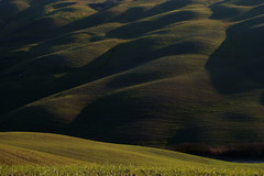 Non_Linearity (Massimo Valiani) Tags: winter italy green stone italia shadows sony curves hills tuscany fields siena massimo asciano linearity a350 valiani