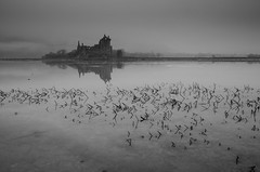 Kilchurn Castle Frozen (Belhaven2011) Tags: blackandwhite mist cold castle ice misty fog reeds scotland frozen nikon argyll scottish explore loch lochawe kilchurn 1685 kilchurncastle explored 1685mm nikond7000 belhaven2011 johnlawsonbelhaven
