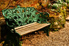 113 Pictures in 2013 #99 Somewhere to sit (Karyn .) Tags: uk flowers bench seat dorset sit snowdrops sittin kingstonlacy admire 113picturesin2013