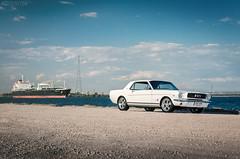 Ford Mustang 1966 (spotandshoot.com) Tags: ford 1966 adelaide mustang southaustralia musclecar automotivephotography andreymoisseyev moisseyevcom michaelbassham